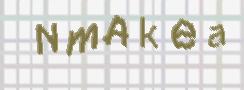 CAPTCHA billede for SPAM beskyttelse